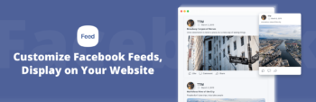 facebook feed wordpress plugin digtvbg